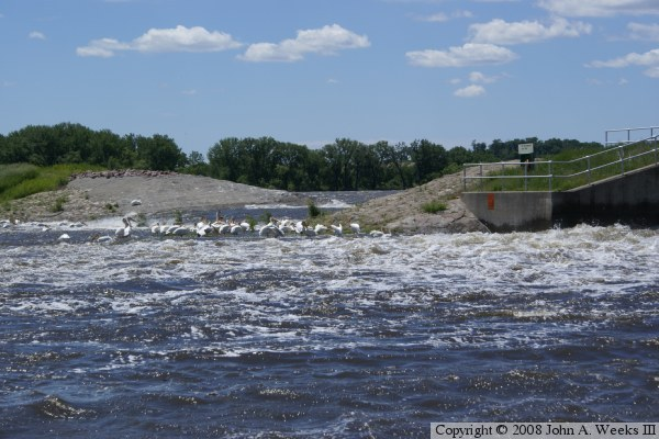 Marsh Lake Dam Appleton Mn